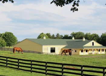 Outdoor view of stables at Pacific Farms